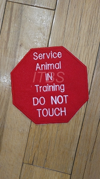 Service animal in training Do Not touch 4x4 5x5